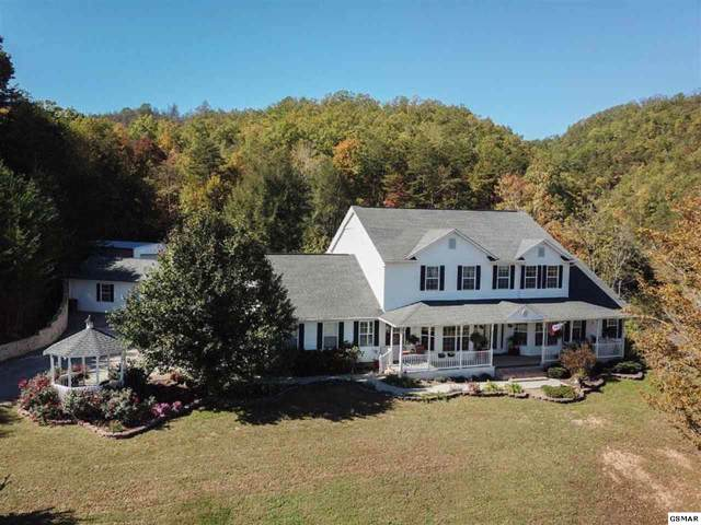 1650 Little Cove Rd, Sevierville, TN 37862 (#224796) :: Billy Houston Group