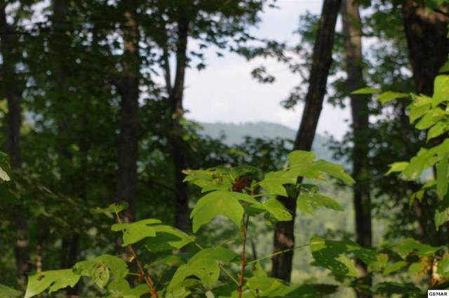 Lot 4 Caton's Grove, Cosby, TN 37722 (#224799) :: Prime Mountain Properties