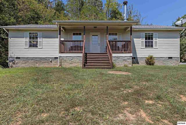 393 Lane Hollow Rd, Sevierville, TN 37876 (#224804) :: Billy Houston Group