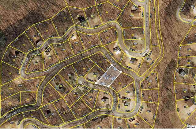 910 Pine Cone Way Lot 24, Gatlinburg, TN 37738 (#224811) :: Billy Houston Group