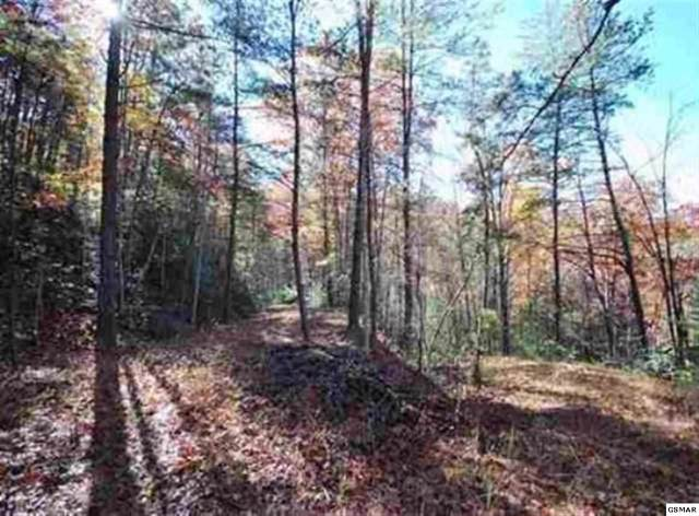 Lot 49 Jefferson Road, Gatlinburg, TN 37738 (#224854) :: Four Seasons Realty, Inc