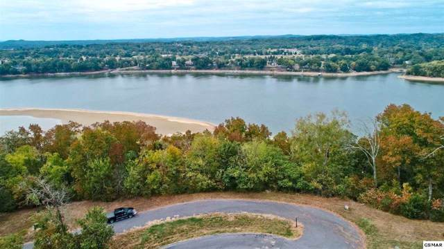 LOT 17 Waterford Way, Newport, TN 37821 (#224869) :: The Terrell Team