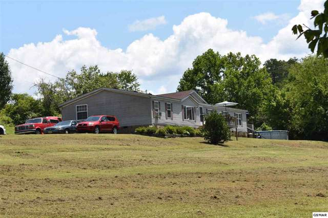 3535 Sims Cemetery Rd, Sevierville, TN 37876 (#224916) :: Colonial Real Estate