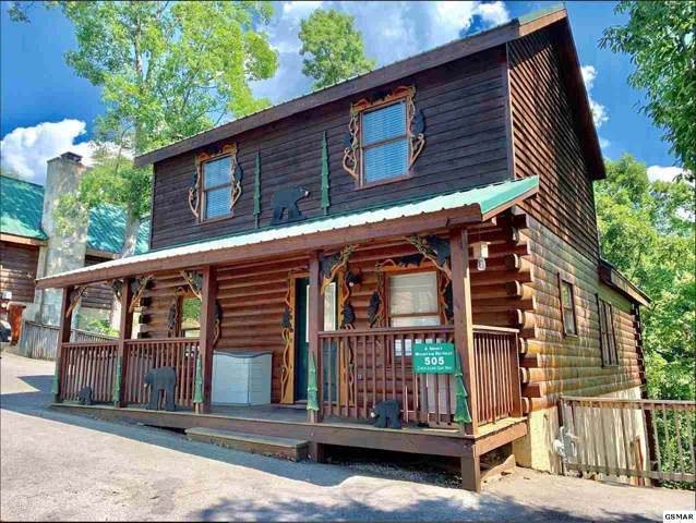 505 Chickasaw Gap Way, Pigeon Forge, TN 37863 (#224924) :: Colonial Real Estate