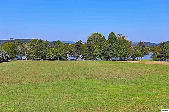 271 W Shore, Rockwood, TN 37854 (#224926) :: Prime Mountain Properties