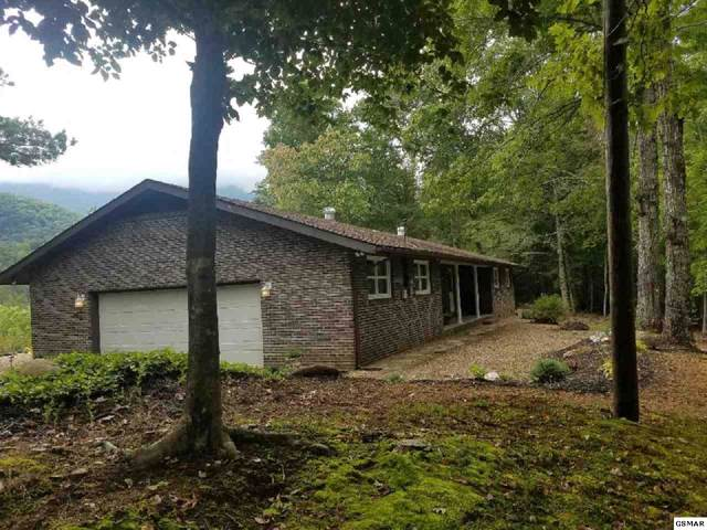 4965 Cote Way, Cosby, TN 37722 (#224961) :: Four Seasons Realty, Inc