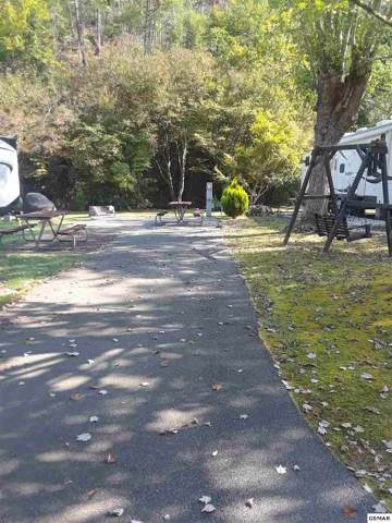 Lot 300 4229 East Parkway, Gatlinburg, TN 37738 (#224985) :: Four Seasons Realty, Inc