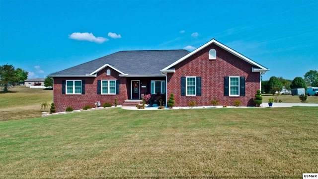 264 Scenic Dr, Newport, TN 37821 (#224991) :: Colonial Real Estate