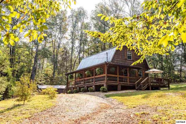 205 Blue Herron Way, Ten Mile, TN 37880 (#224996) :: Prime Mountain Properties