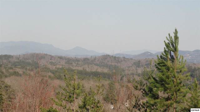 Lots 54&55 Laughing Pines Ln, Pigeon Forge, TN 37876 (#225003) :: The Terrell Team
