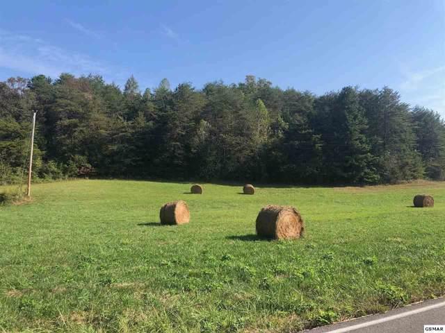 8 acres Dupont Rd, Seymour, TN 37865 (#225018) :: The Terrell Team
