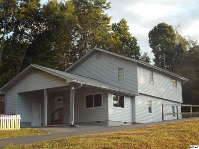 147 Sugar Hollow Rd, Pigeon Forge, TN 37863 (#225032) :: Colonial Real Estate