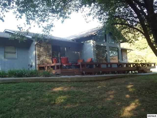 447 Riverbriar Lane, Kodak, TN 37764 (#225052) :: Colonial Real Estate