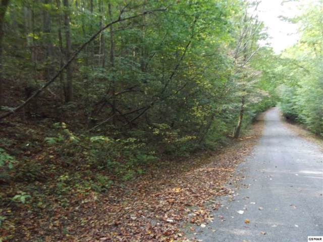 Lot 26 Riversong Way, Pittman Centre, TN 37876 (#225083) :: The Terrell Team