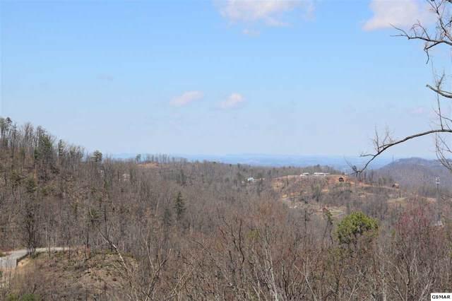 949 Crooked Ridge Rd, Gatlinburg, TN 37738 (#225088) :: Jason White Team | Century 21 Four Seasons