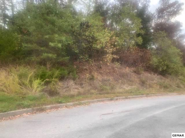 LOT# 60 Oak Lake Drive, Sevierville, TN 37876 (#225092) :: The Terrell Team