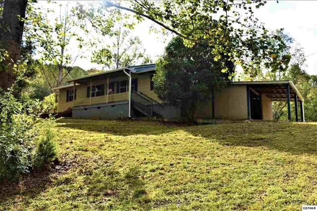 336 Boat Gunnel Rd., Townsend, TN 37882 (#225098) :: SMOKY's Real Estate LLC