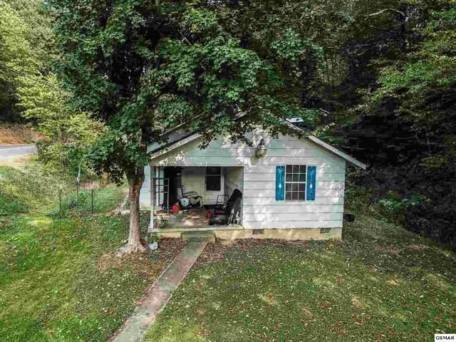 732 Hardin Ln, Sevierville, TN 37862 (#225117) :: Colonial Real Estate