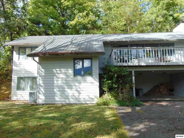 229 Seaton Dr, Gatlinburg, TN 37738 (#225120) :: Colonial Real Estate