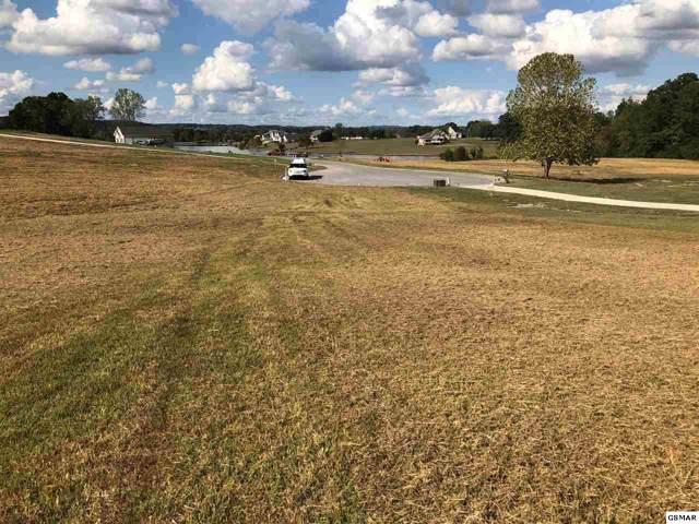 Lot 135 Fair Meadows, Dandridge, TN 37725 (#225124) :: Colonial Real Estate