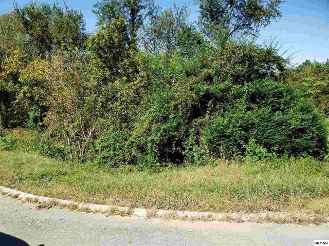 Lot 11 Stirrup Lane, Pigeon Forge, TN 37863 (#225134) :: Colonial Real Estate
