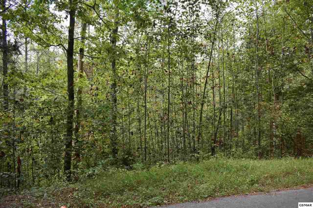 Powdermill Road Lot 127, Gatlinburg, TN 37738 (#225155) :: The Terrell Team