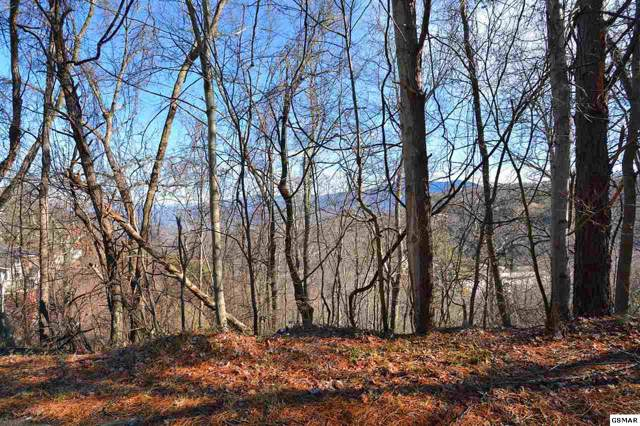 Lot 6 Ski View Drive, Gatlinburg, TN 37738 (#225162) :: The Terrell Team