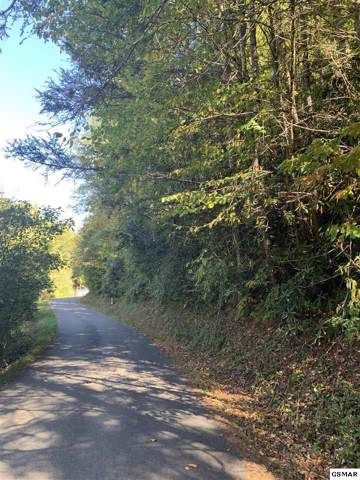 1-A Grassy Branch Loop Lot 1-A, Sevierville, TN 37876 (#225181) :: Four Seasons Realty, Inc