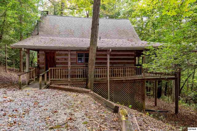 144 Black Mash Hollow, Townsend, TN 37882 (#225183) :: Billy Houston Group