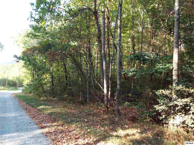 Lot 40 Grand Country Drive, Cosby, TN 37722 (#225184) :: Four Seasons Realty, Inc