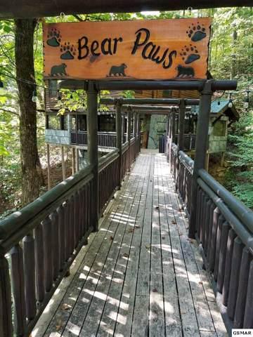 4239 Alyssa Way Bear Paws, Gatlinburg, TN 37738 (#225191) :: Billy Houston Group