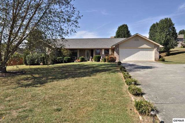 1317 Sarek Avenue, Sevierville, TN 37876 (#225193) :: Prime Mountain Properties