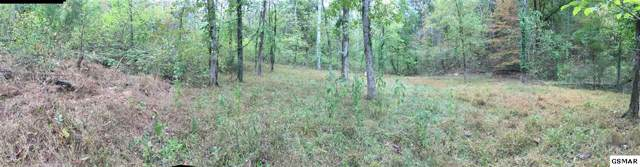 Lane Hollow Rd - Off, Sevierville, TN 37876 (#225231) :: Billy Houston Group