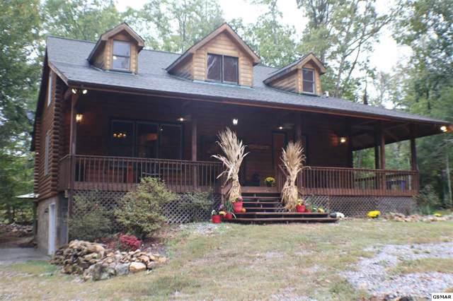 3350 Rocky Ridge Rd, Cosby, TN 37722 (#225233) :: Colonial Real Estate