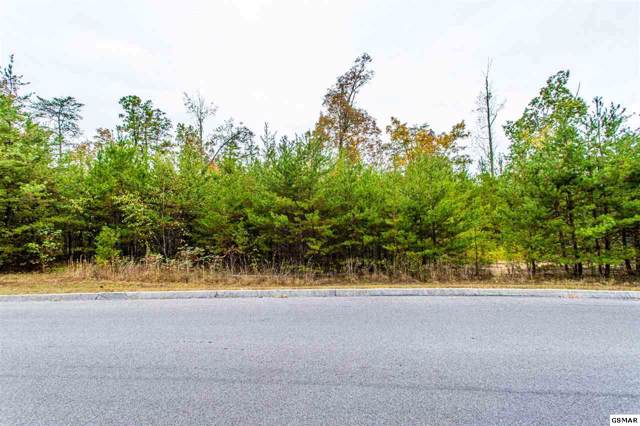 Lot 69 Smoky Cove Rd, Sevierville, TN 37876 (#225235) :: Colonial Real Estate