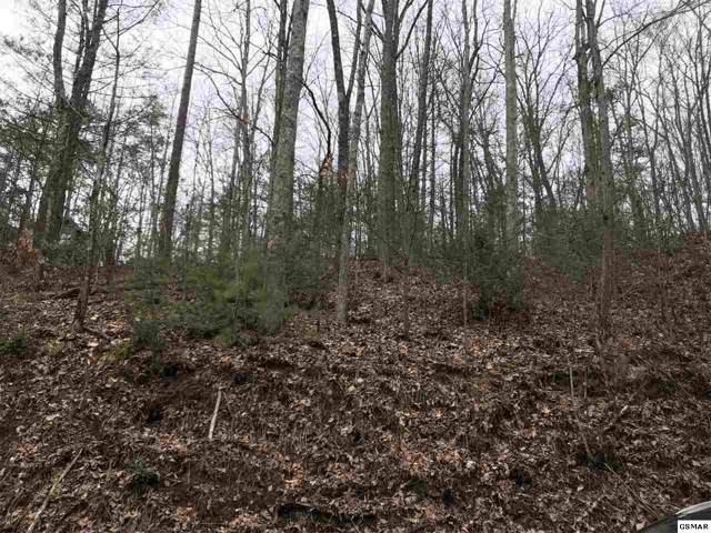 Lot 60 Ridgefield Dr, Sevierville, TN 37876 (#225237) :: The Terrell Team