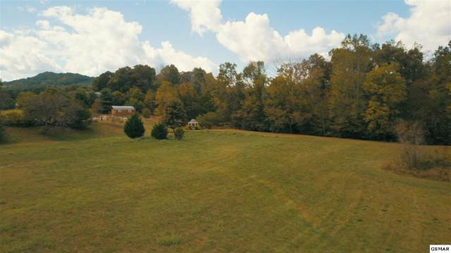 3154 Wears Valley Rd. Tracts 1 And 3, Sevierville, TN 37862 (#225242) :: Colonial Real Estate