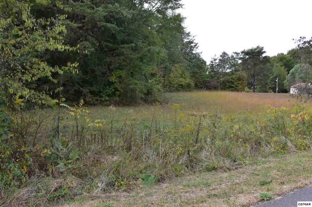 Lot 45 Virginia Ave, Sevierville, TN 37876 (#225251) :: Colonial Real Estate