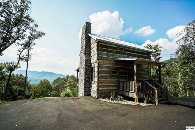813 Old New Ground Road, Gatlinburg, TN 37738 (#225265) :: Prime Mountain Properties