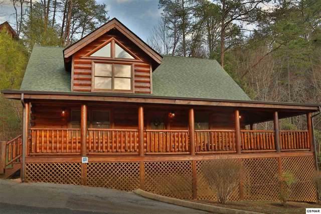 2019 Bear Haven Way Mountain Fun, Sevierville, TN 37862 (#225271) :: SMOKY's Real Estate LLC