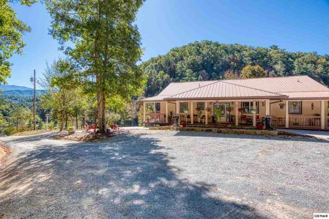 4143 Jones Cove Rd, Sevierville, TN 37876 (#225289) :: The Terrell Team
