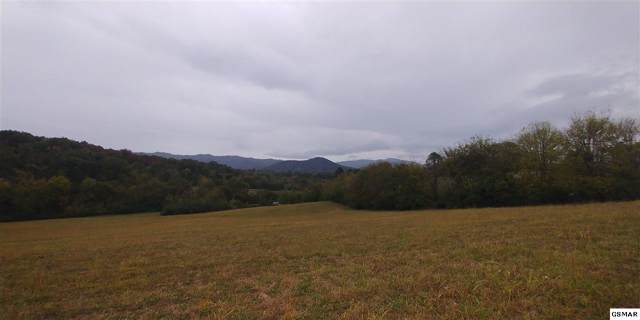 5.88 Acres Murray Branch Dr, Newport, TN 37821 (#225294) :: Colonial Real Estate