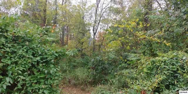5.70 Acres Wild Acres Dr, Newport, TN 37821 (#225314) :: SMOKY's Real Estate LLC