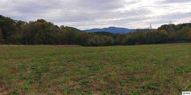 7.95 Acres Pack Way, Newport, TN 37821 (#225317) :: Colonial Real Estate