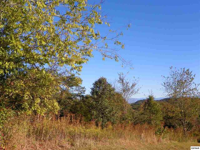 Lot# 95 Eagle View Drive, Kodak, TN 37764 (#225330) :: SMOKY's Real Estate LLC