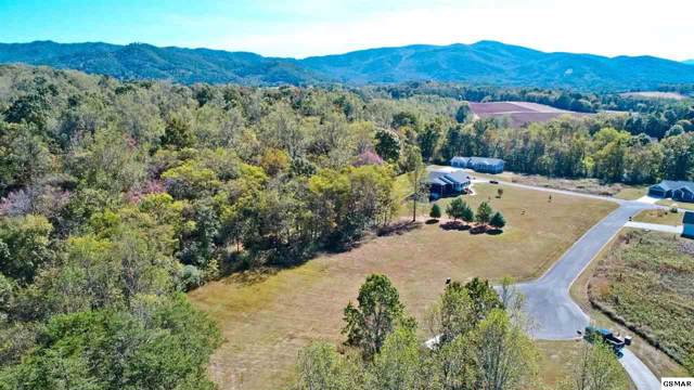 LOT 21 Woodvale Rd, Newport, TN 37821 (#225336) :: Colonial Real Estate