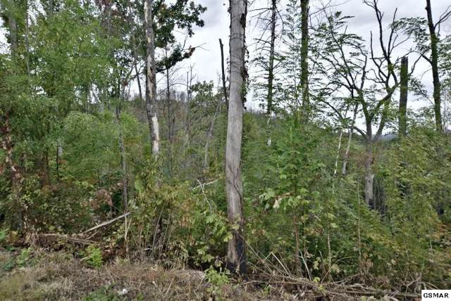 Lot 479 Pinecrest Court, Gatlinburg, TN 37738 (#225337) :: The Terrell Team