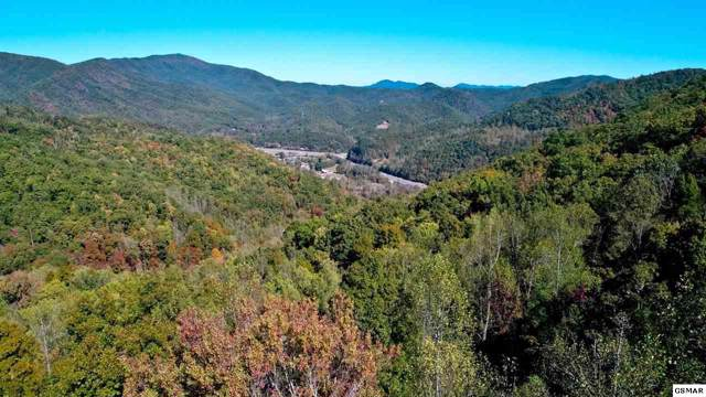 4100 Barnes Hollow Rd, Hartford, TN 37753 (#225340) :: Colonial Real Estate