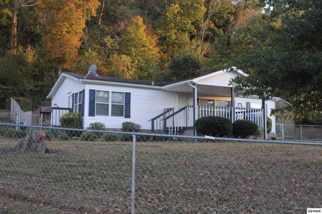 550 Shellbark Rd, Newport, TN 37821 (#225344) :: Colonial Real Estate