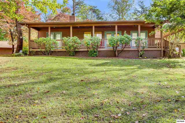 3529 Ginseng Way, Sevierville, TN 37862 (#225373) :: Colonial Real Estate